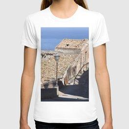 "Old Abandoned Barn of Sicily - ""Vacancy"" zine T-shirt"