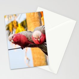 Galahs Stationery Cards