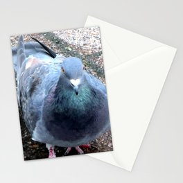 Urban Pigeon on City Sidewalk Stationery Cards