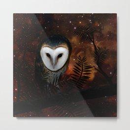 Barn owl at night Metal Print