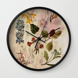 Botanical Study #1, Vintage Botanical Illustration Collage Wall Clock