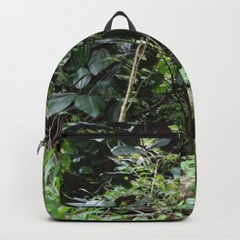Tropical Rainforest 04 Backpack