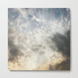 Flying Solo Metal Print