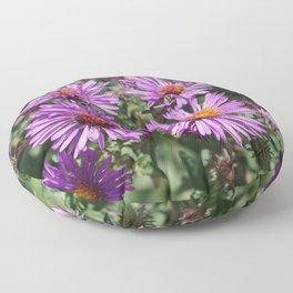 Autumn Amethyst - New England Aster flowers Floor Pillow