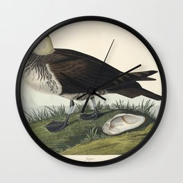 Jager from Birds of America (1827) by John James Audubon etched by William Home Lizars Wall Clock