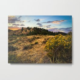 Wyoming Wildflowers Sunset Metal Print