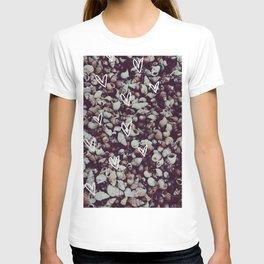 charcoal seashell pattern T-shirt