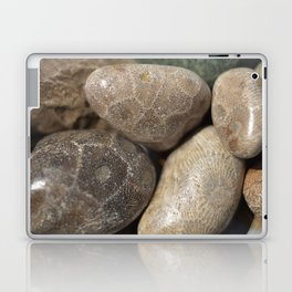 Petoskey Stones Laptop & iPad Skin