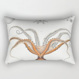 Red octopus and an argonaut  from Mollusca  Shells by Augustus Addison Gould Rectangular Pillow