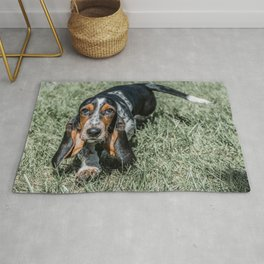 Basset Hound Puppy Droopy Ears Walking in Green Grass Cute Adorable Dog Photography Rug