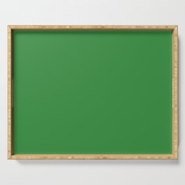 All About The Greens Shamrock / Emerald / Parakeet Green Solid Color Pairs To Sherwin Williams Envy SW 6925 Serving Tray