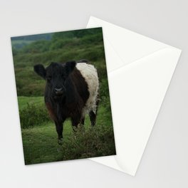 Belted Galloway Cow Stationery Cards