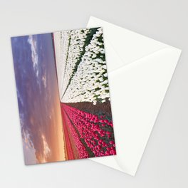 II - Rows of colourful tulips at sunrise in The Netherlands Stationery Cards
