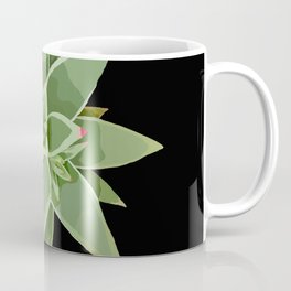 Succulent Species Echeveria agavoides 'Martin's Hybrid' Black Coffee Mug
