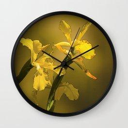 Golden Yellow Daffodils Wall Clock