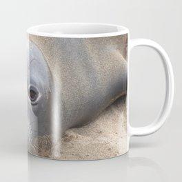 Northern Elephant Seal Coffee Mug