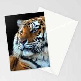Sumatran Tiger - Panthera Tigris Sumatrae Stationery Cards