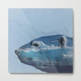 Arctic-My sweet home Metal Print