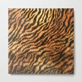 Bengal Tiger Fur Wildlife Print Pattern Metal Print