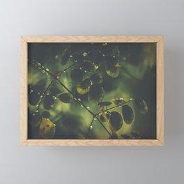 Feuilles Framed Mini Art Print