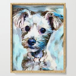 Schnoodle 3 Serving Tray