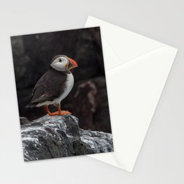 Puffin on cliff Stationery Cards