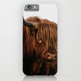 Highland Cow in nature   Wild Scottish Highlander, cattle in the Netherlands   Wild animals   Fine art travel and nature photography art print iPhone Case
