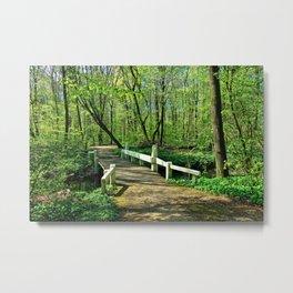 Forest Bridge Metal Print