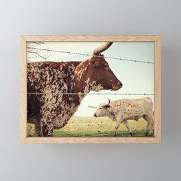 Texas Longhorn Cattle Framed Mini Art Print