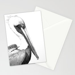 Black and White Pelican Stationery Cards