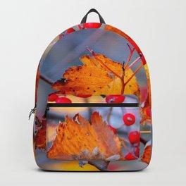 Elegant Hawthorn Berries In Autumn Backpack