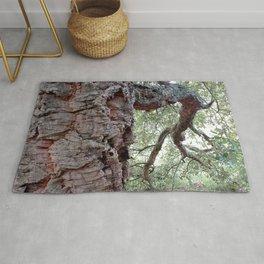 Cork Oak Tree Forest 1 Rug
