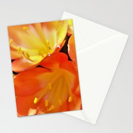 Orange Yellow Flowers by Reay of Light Stationery Cards