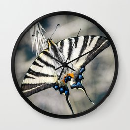 Beautiful Iphiclides podalirius butterfly on ear of corn Wall Clock
