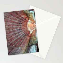 Scallop Shells Macro photography Texture Stationery Cards