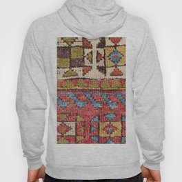 Octagon Stars // 19th Century Colorful Classic 1970s Brown Green Orange Pallete Ornate Accent Patter Hoody