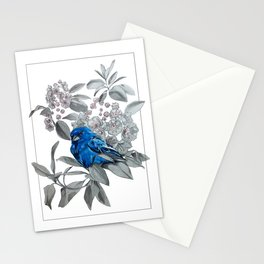 Indigo Bunting Stationery Cards