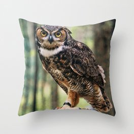 Majestic Owl Stare Throw Pillow