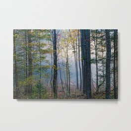 Mystic Forest - Early Morning Glow in Smoky Mountains Metal Print