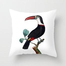 Red-Beaked Toucan Throw Pillow