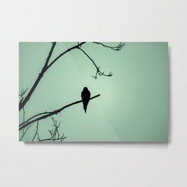 Bird Silhouette - Light Green Metal Print