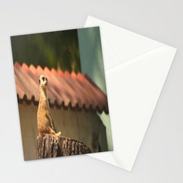 Meerkat Funny Observer #decor #society6 #buyart Stationery Cards