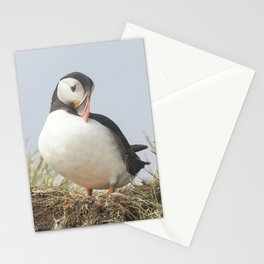 The shy puffin Stationery Cards
