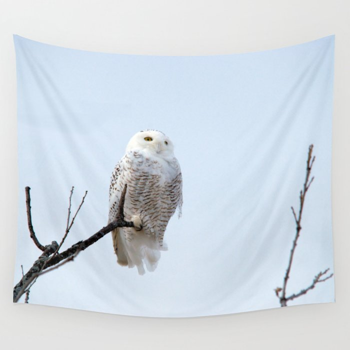 Lofty Vision (Snowy Owl) Wall Tapestry
