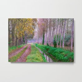 Country road close to an irrigation ditch in a natural park during autumn Metal Print