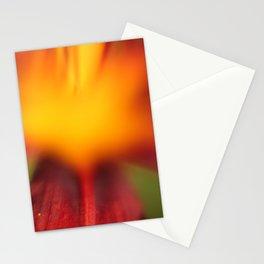 Lilly2 Stationery Cards