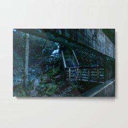 Calm Rain Forest Metal Print