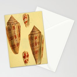 A catalogue of shells (1825) - Conus gloria maris; Conus vespertinus Stationery Cards