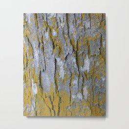 ochre on oak Metal Print