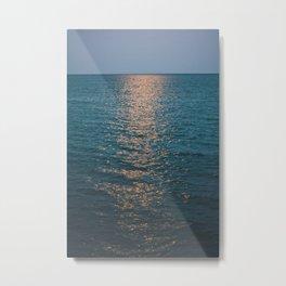 Moonlight Lake Metal Print